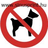 Kutyát behozni tilos piktogram
