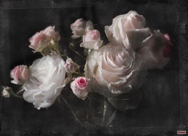 4 részes poszter 194x270 cm Roses 4-077