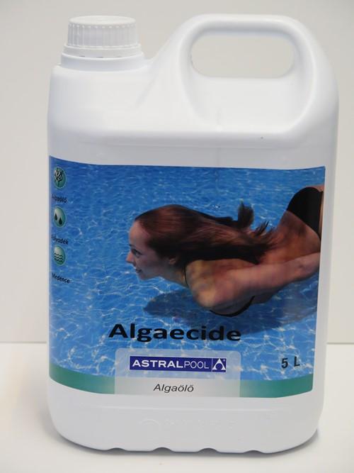 AstralPool Algaecide algaölő habzó változat 5L 11417