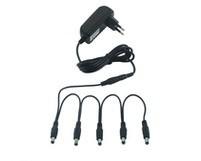 Warwick RockPower RP-NT50 adapter + ötös elosztó